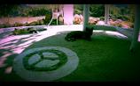 hippys-potami-2016-09-23-um-05-40-05